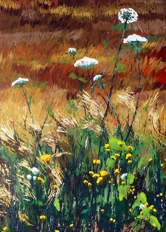 Roswita Busskamp painting Queen Anne's Lace